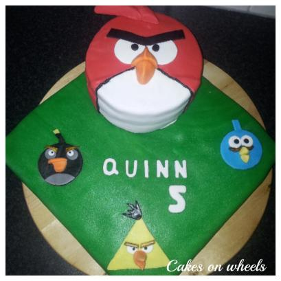 Quinn 5 jaar