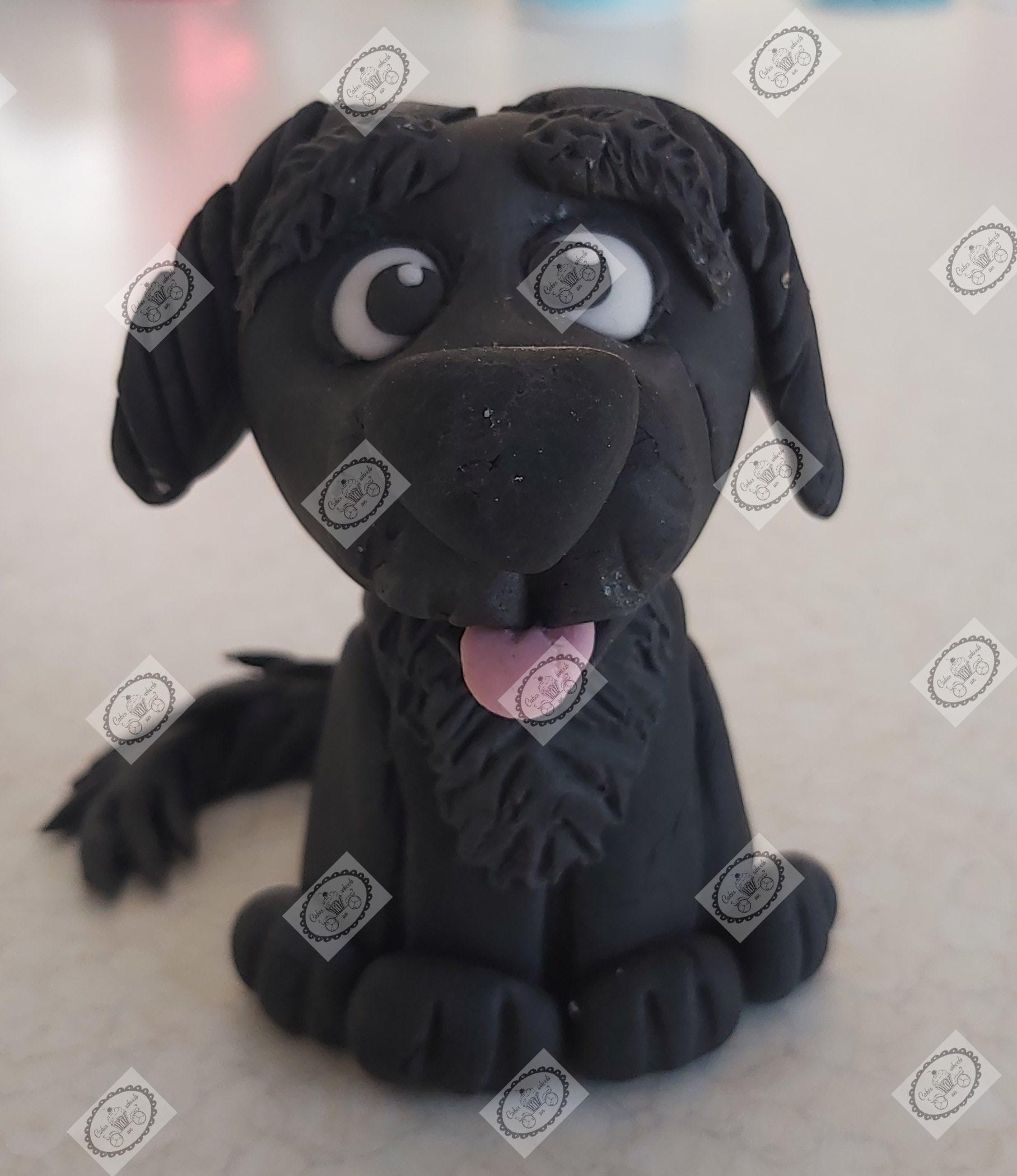 Puppy zwart