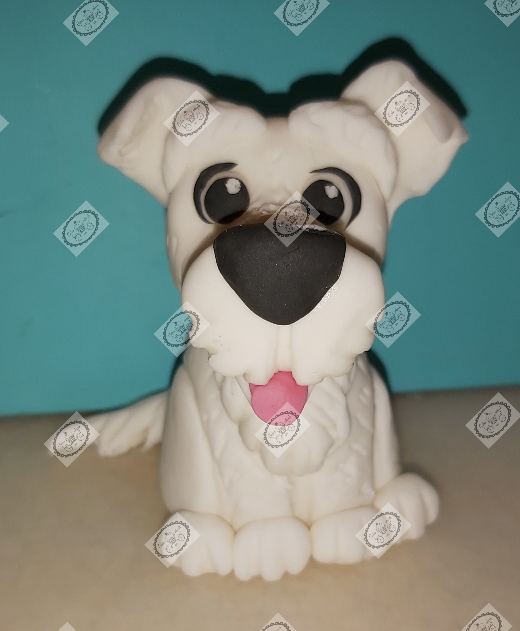 Puppy wit